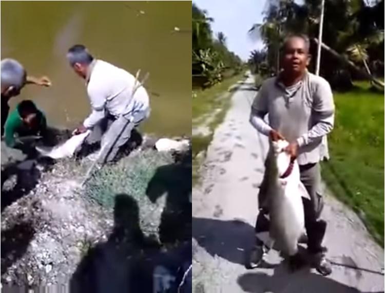 Subhanallah, Memancing Di Sungai Yang Kecil Dapat Ikan 15 Kilo. Memang Rezeki Namanya