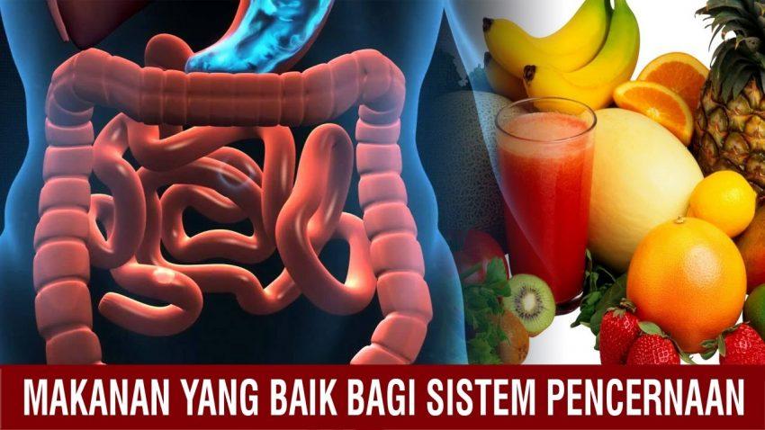 Image result for 2 langkah Mudah Menjaga Organ Pencernaan Agar Tetap Sehat