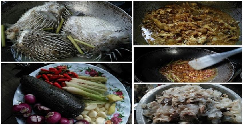 Masak Ikan Buntal